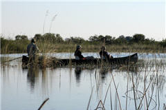 Flood plain, Okavango (A. Kinzig)